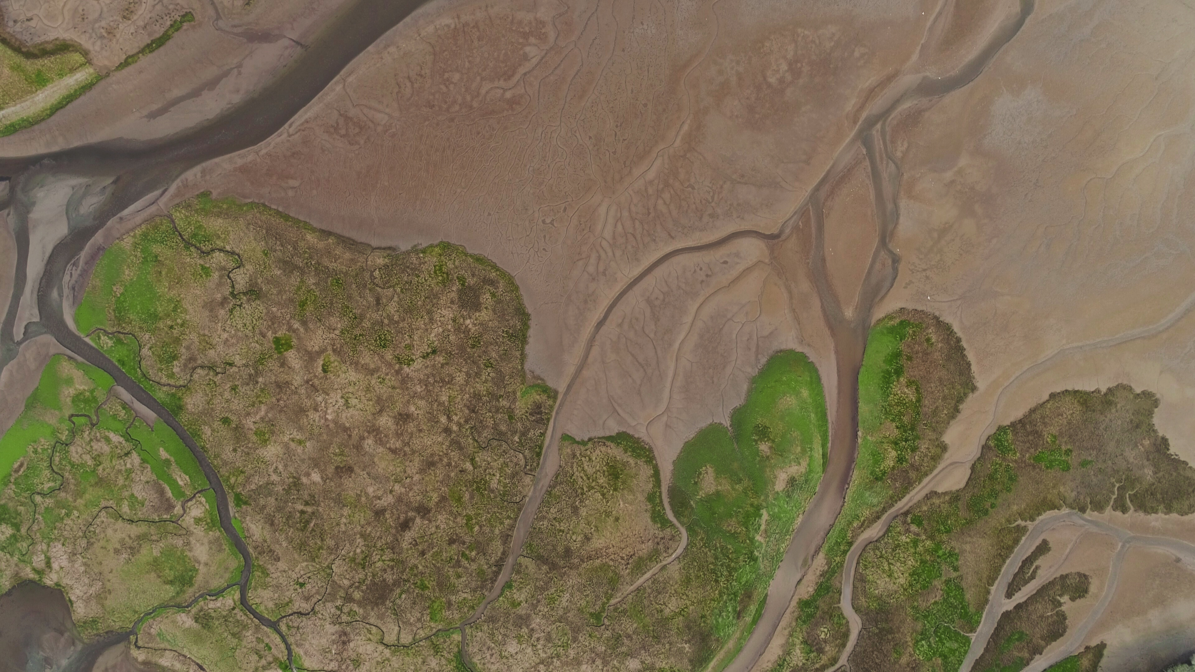 Aerial view of landscape.