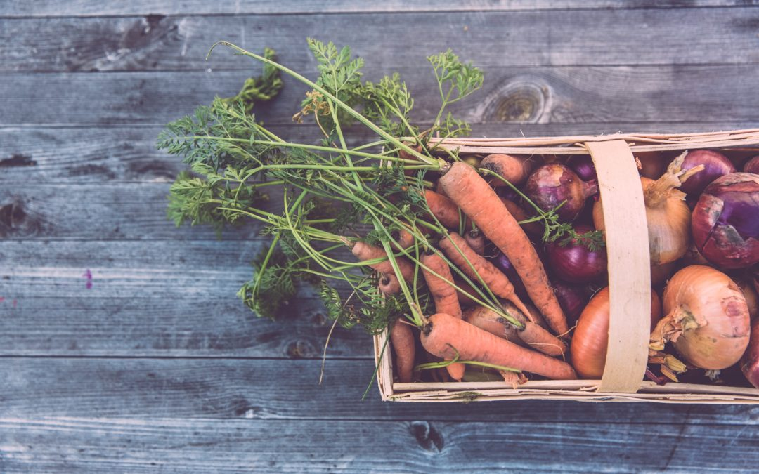3 More Tips for Successful Fall Gardening