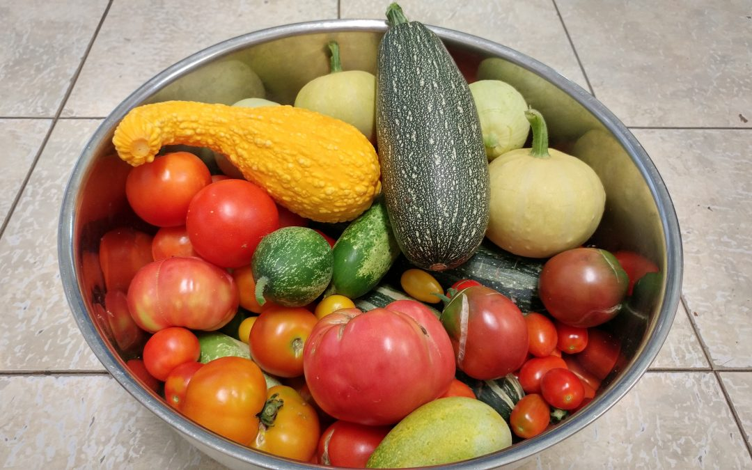 Photo of produce in bowl for Garden Timeline Calculations Post
